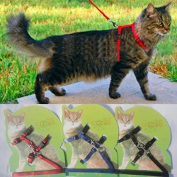Cat Harness And Leash Populair Verkoop 3 Kleuren Nylon Producten Voor Dieren Verstelbaar Pet Traction Harness Belt Cat Kitten Halter Collar